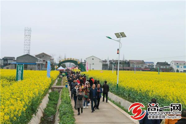 常德鼎城区十美堂第六届油菜花节