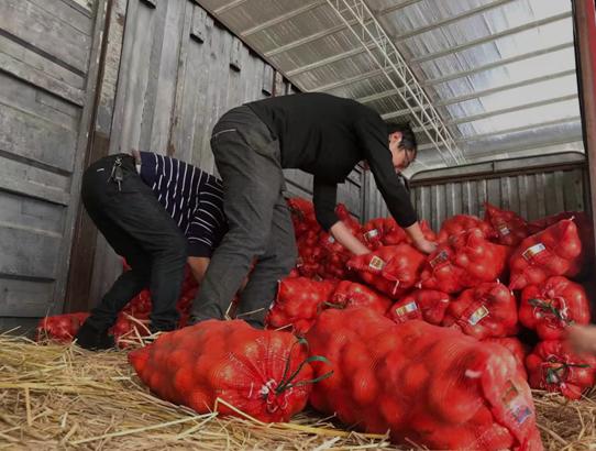 常德石门果农捐两万斤冰糖橙驰援武汉